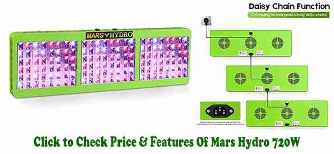 Mars Hydro 720W Review - Best LED Grow Light for indoor Growing