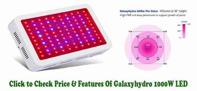 Roleadro Galaxyhydro Series 1000W - Review of Best LED Grow Light for Indoor Plants