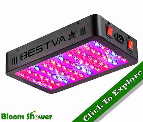 Check Price - Bestva 600W LED Grow Light Review