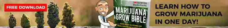 grow-bible-free-download