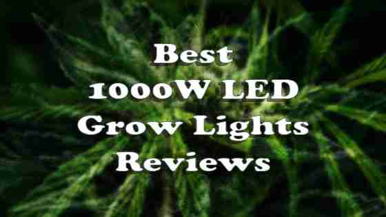 Best 1000W LED Grow Lights in 2020 – Reviews of Top Rated Full Spectrum LEDs
