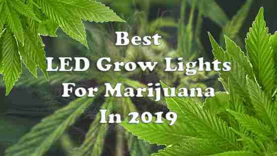 Best LED Grow Lights for Indoor Marijuana Growing In 2019