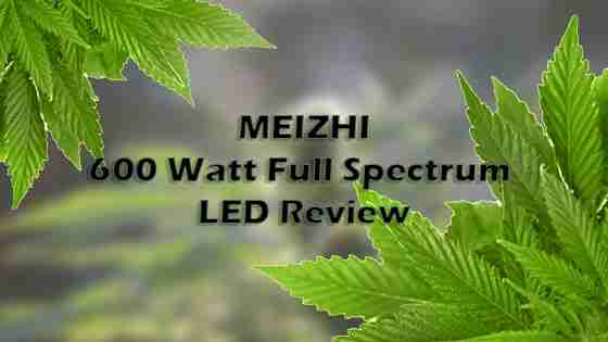 Meizhi 600W Reflector LED Grow Light Review – Is This LED Worth The Money?
