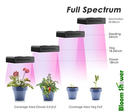 Spectrum - Mars Hydro 300 Watt Review