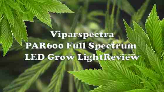 Viparspectra PAR600 600W LED Grow Light – Complete Unbiased Review
