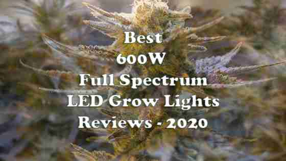 Reviews of Best 600W LED Grow Lights in 2020 – For Marijuana