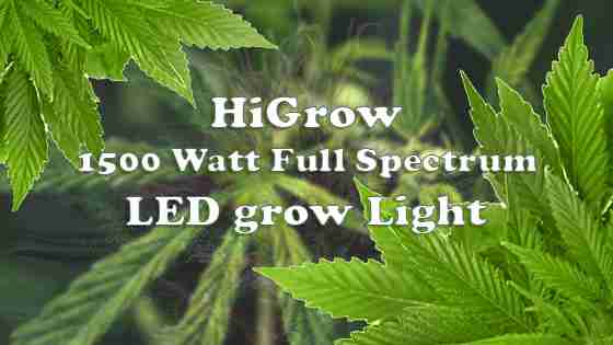 HiGrow 1500W LED Grow Light  – Review For 2020 Model