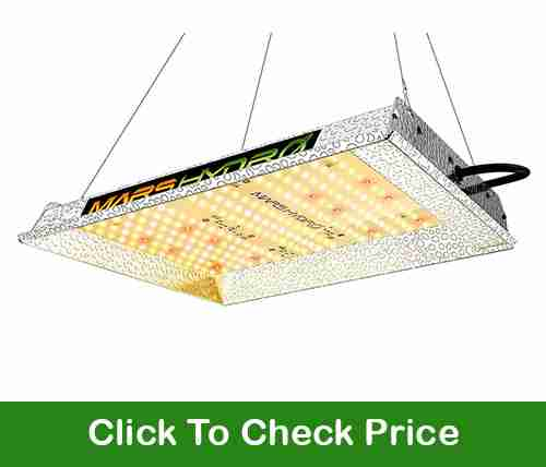 Mars Hydro TS600 LED grow light