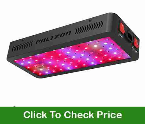 Phlizon 600W LED grow light for 2X2 grow area