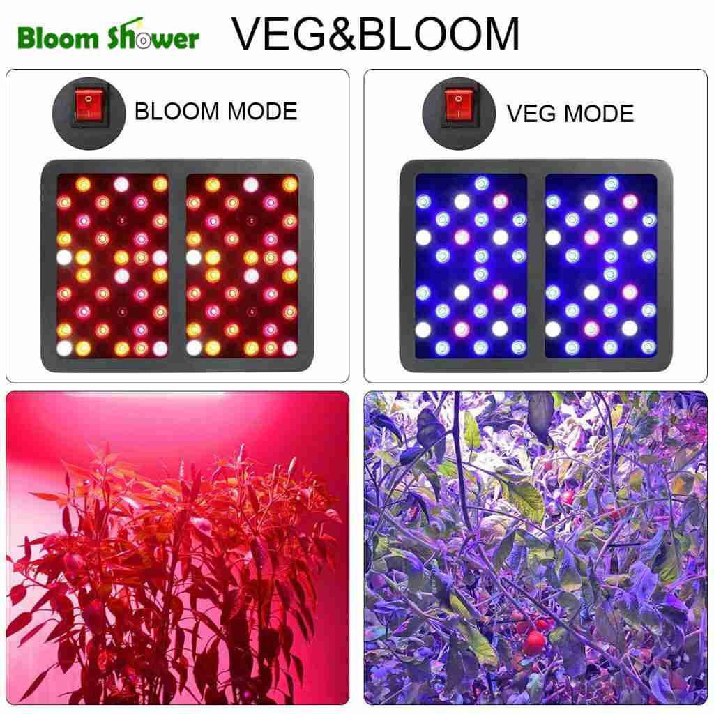 bestva led grow light - 1200W LED Review